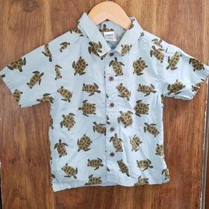 Gymboree, boys, 2t, turtle shirt